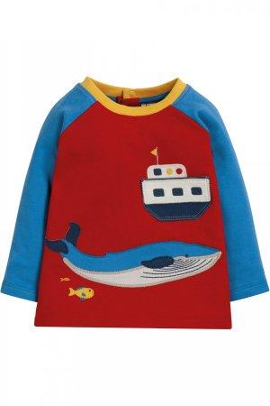 tröja baby & barn raglanärm applikation båt & val